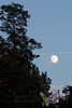 09-09-2011-Moonrise-7710