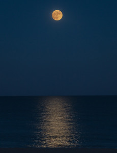161113_32_MD_OC Moonrise-4p1