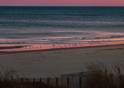190225_08_MD_OC Sunset-p1-1