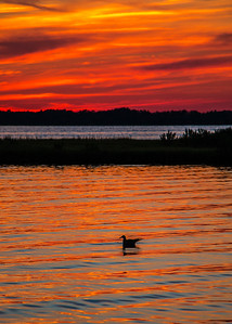 150813_MD_OC_NSidePk Sunset-4159-1