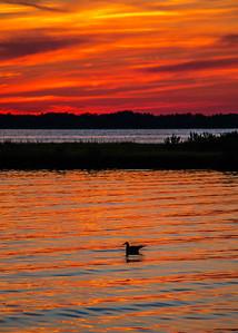 150813_MD_OC_NSidePk Sunset-4159-1