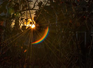 December sun flare I