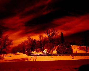 color infrared landscape--Smugmug