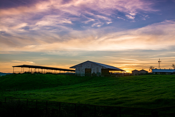 Barn At Sunset 1