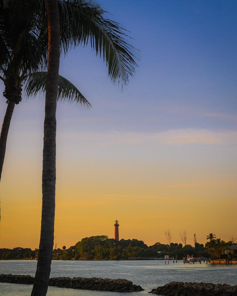 Jupiter Lighthouse Palms