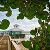 Juno Beach Pier Seagrapes