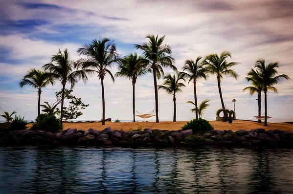 Hammock in the Palms