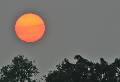 Taken with my Bigma Lens. This mornings Sun. 26 June, 2005