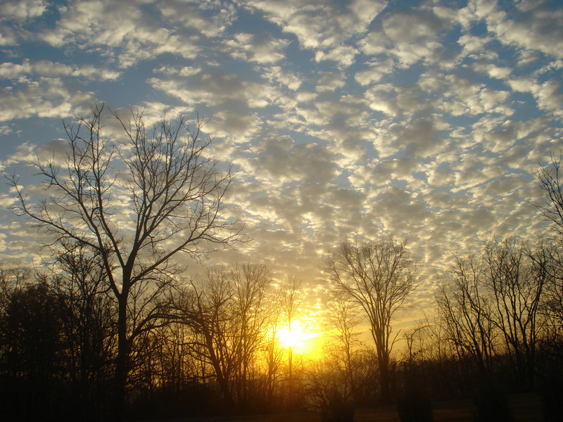 Winter Sunrise in the Midwest