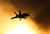 Boeing F/A-18F Super Hornet | United States Navy