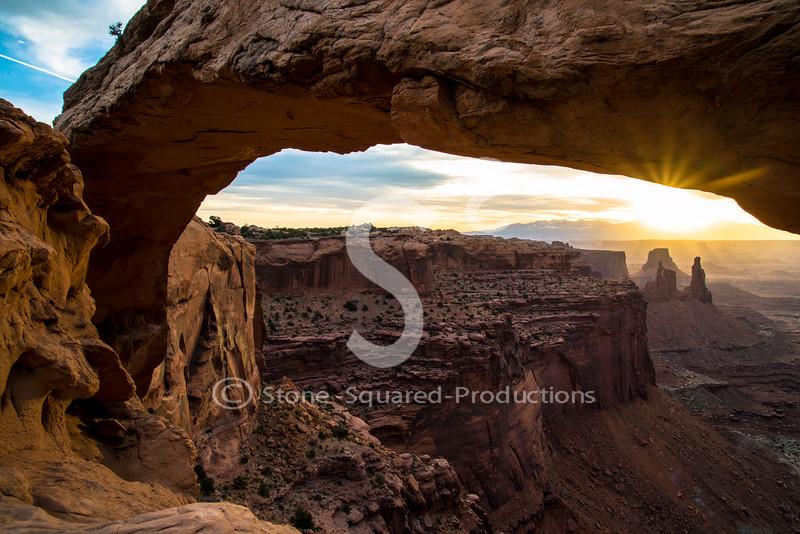 Mesa Sunburst