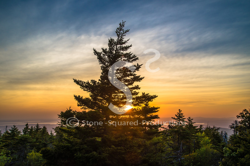 Rays Sunset