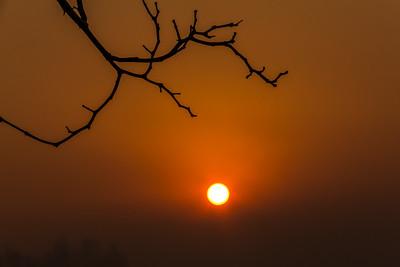 Smokey sunrise Grass Valley 010 (8)