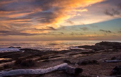 Point Lobos CA 440