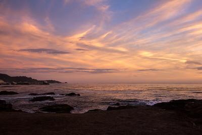 Point Lobos CA 433