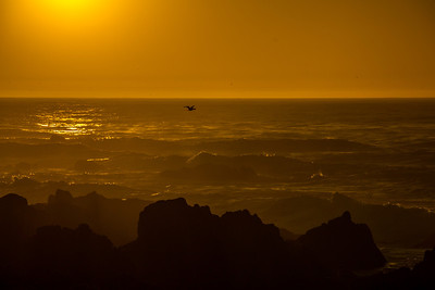 Monterey Sunset 057