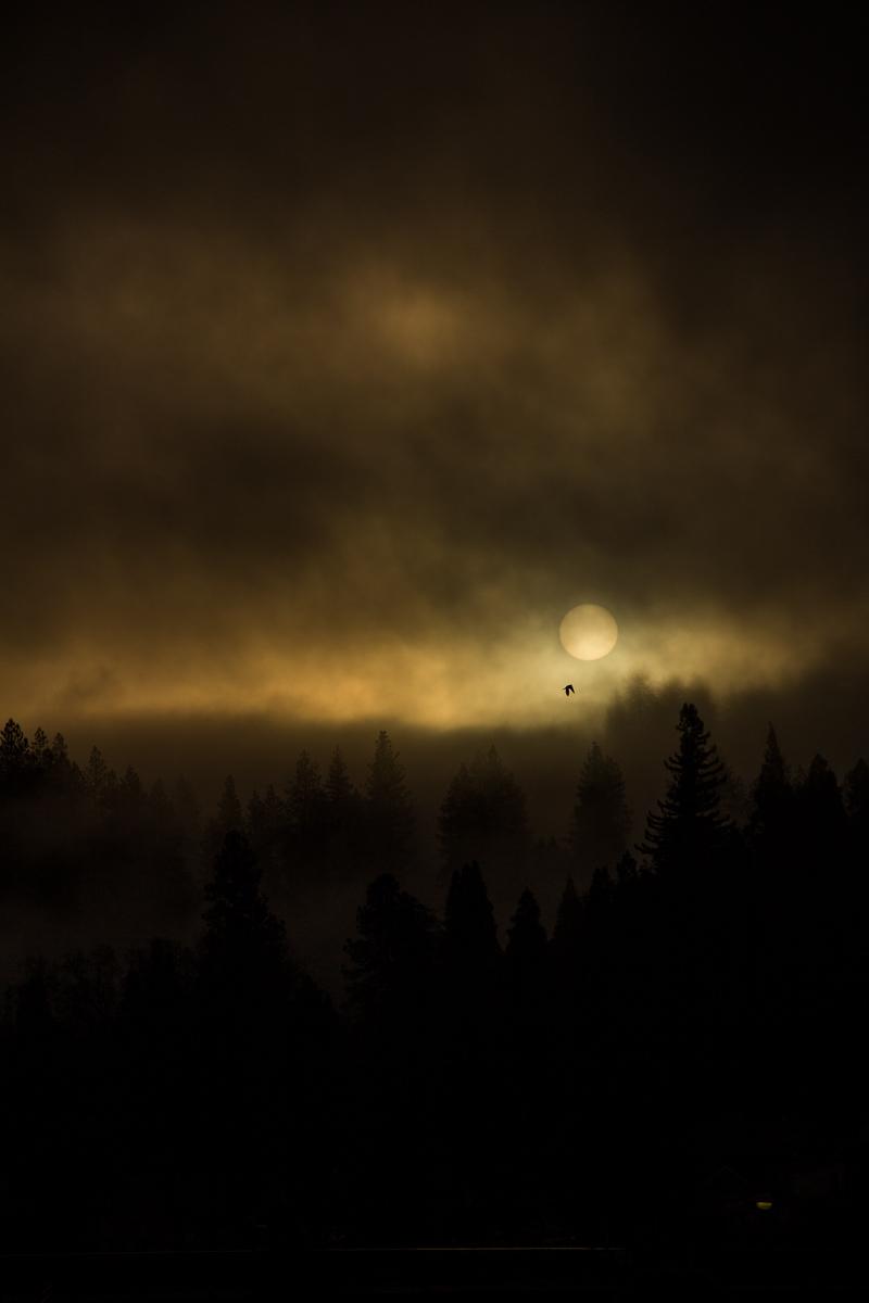 Grass valley Sunrise (7)