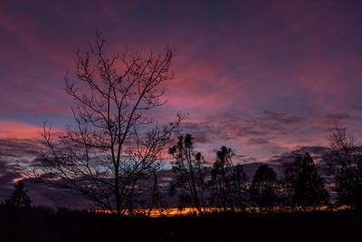 January Sunset 107