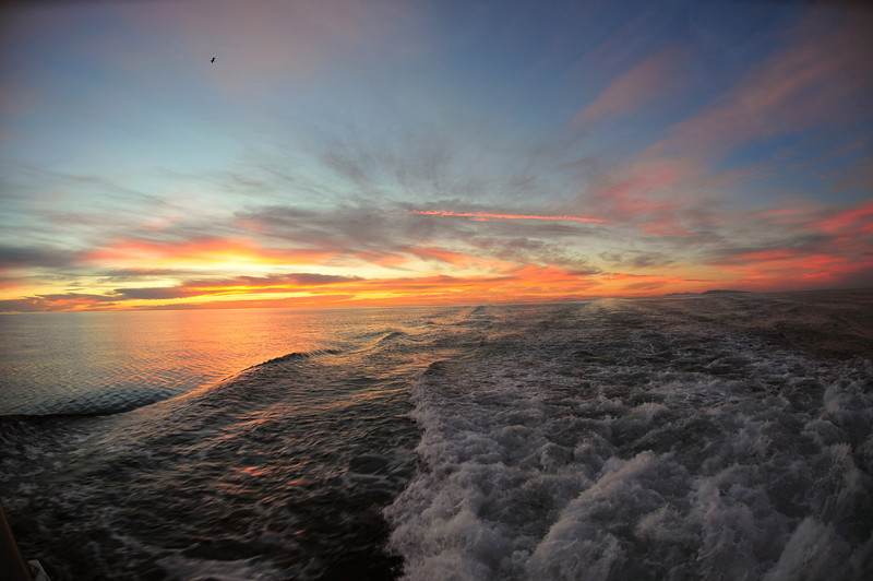 Sunrise from the stern of the boat near Isla San Jose.