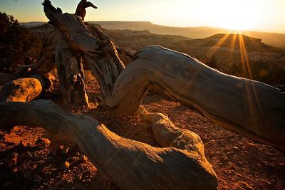 Utah Fall 2008 204