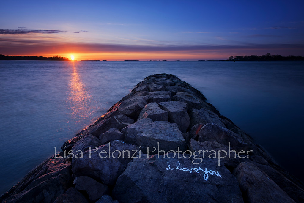 _DSC3620-Edit-EditApril 13, 2016Lisa Pelonzi