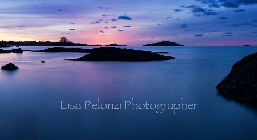 _DSC4505-EditFebruary 22, 2016Lisa Pelonzi