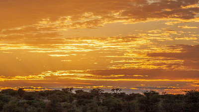 Sunset in the Kruger Park