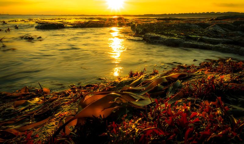 Sunrise and Sunset (143).jpg