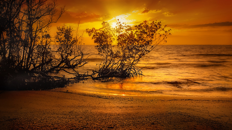 Sunrise and Sunset (80).jpg
