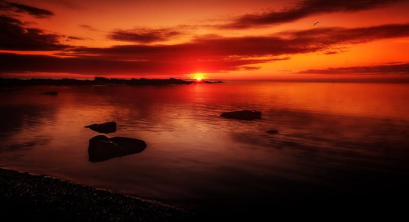 Sunrise and Sunset (45).jpg