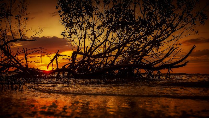 Sunrise and Sunset (83).jpg