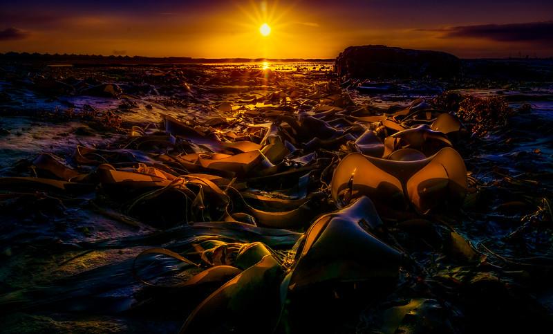 Sunrise and Sunset (100).jpg