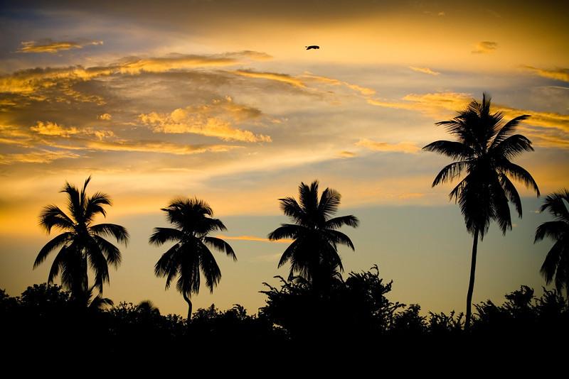 Puerto Rico Sunrise