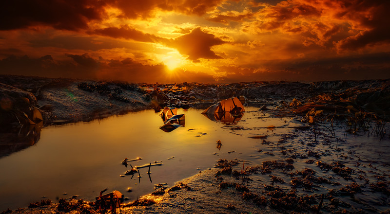 Sunrise and Sunset (99).jpg
