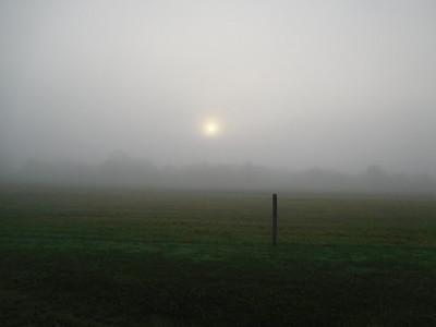 Fog July 17