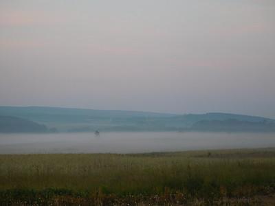 Foggy Sunrise June 12