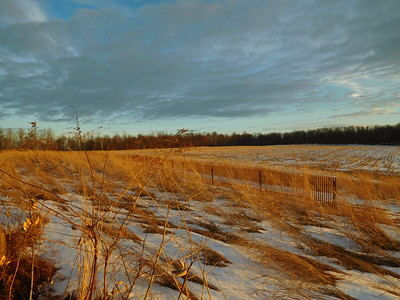 Jan 10 Mud Pike Sunset