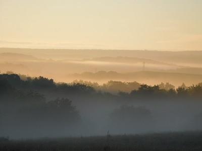 Misty Morning 6-8