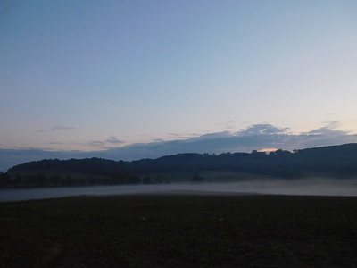 Misty Morning July 4