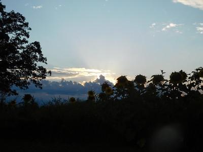 Sunset Aug 19