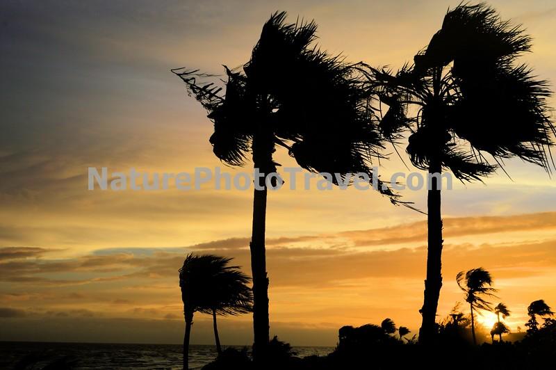 Sunset - Sanibel Island, Florida