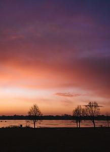 dawn blush