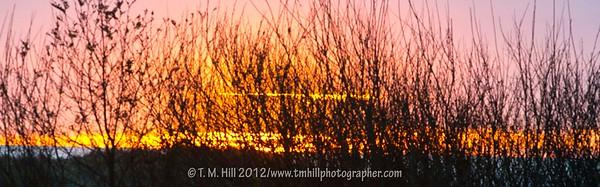HILL4738©TMHILL2012