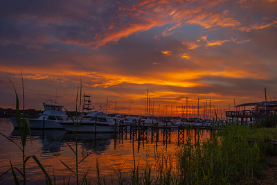 Flordia Marina Sunset