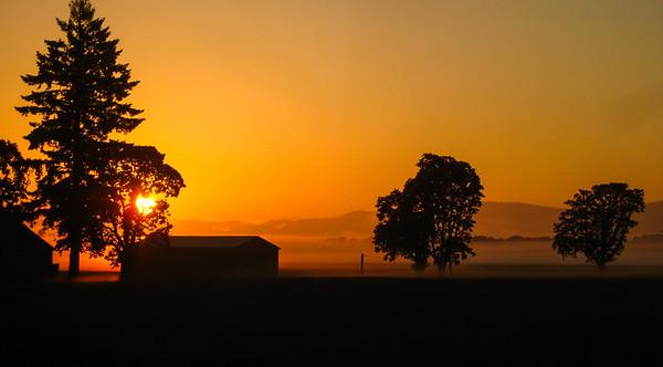 Foggy sunrise in the Willamette Valley, Oregon, USA