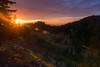 Cascadia Sunset