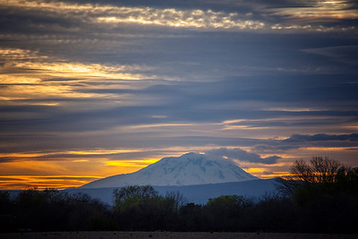 Sunset Mt Adams 3-28-15 - Copy
