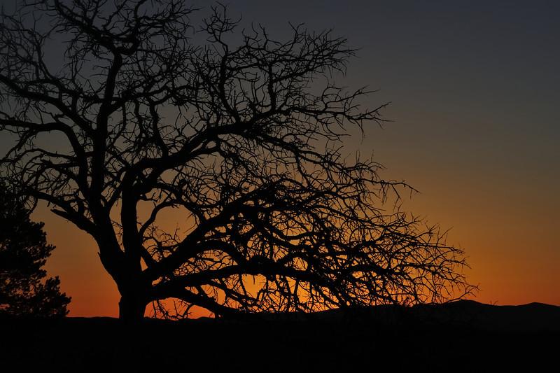 Sunset near Camel Rock