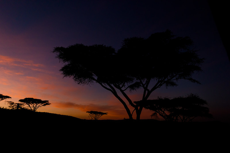 Pre-dawn in Ngorogoro Crater, Tanzania, East Africa