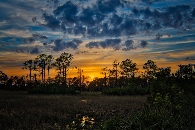 Sunset in Babcock Wildlife Management Area, Punta Gorda, Florida